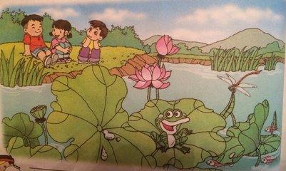 看图写话 夏天的池塘